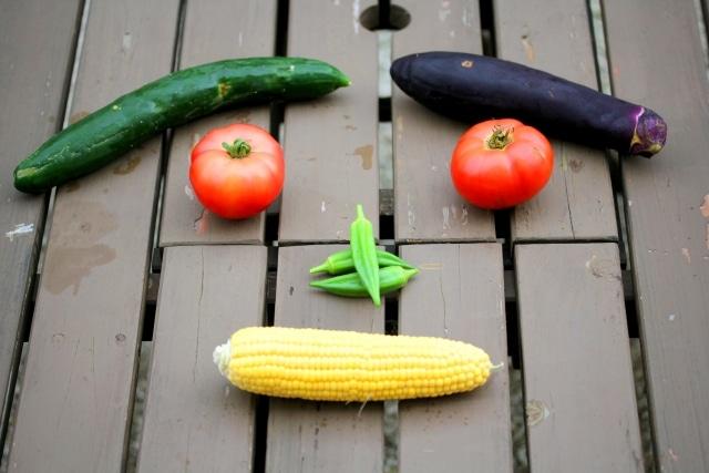 低栄養にならないために予防策と改善策